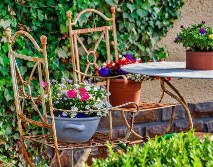 garden-4325782_1920